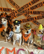 The Village People Dogs Homemade Costume