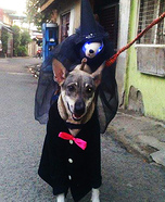 The Witch Dog Homemade Costume