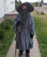 The Wizard Homemade Costume