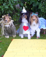 Creative costume ideas for dogs: Wizard of Oz Dog Costumes