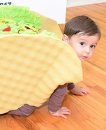 The World Famous 23 lb Super Taco Homemade Costume