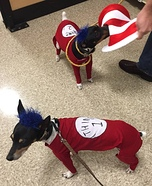Thing 1 and Thing 2 Dog Costumes