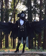 Three-Eyed Raven Homemade Costume