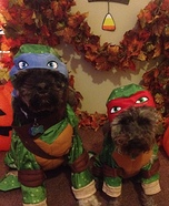 TMNT Dogs Costumes