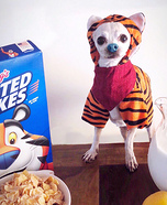 Tony the Tiger Dog Homemade Costume