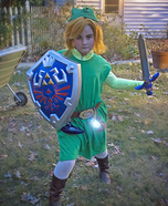 Toon Link Homemade Costume