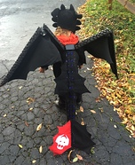 Toothless Homemade Costume