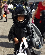 DIY Toothless Costume