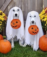 Treat or Treat Dogs Homemade Costume