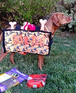 Trick-or-Treat Bag Dog Homemade Costume