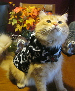 Trick or Treat Kitty Costume