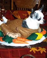 Cooked Turkey Dog Homemade Costume