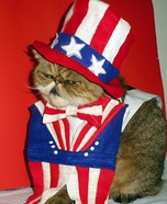 Uncle Sam Cat Costume