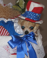Uncle Sam Dog Homemade Costume