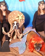 Costume ideas for pets and their owners: Under the Sea Costume