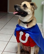 Underdog Homemade Costume