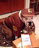 UPS Delivery Man Dog Homemade Costume