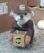 UPS Driver Dog Homemade Costume
