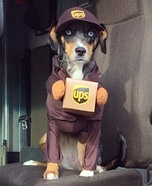 UPS Helper Homemade Costume