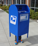 USPS Mailbox Homemade Costume