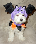 Vampire Bat Costume for Dogs