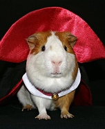Vampire Pig Homemade Costume