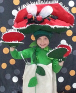 Venus Fly Trap Homemade Costume