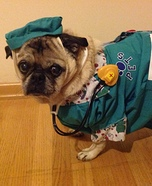 Veterinarian Dog Costume
