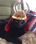 Viking Cat Costume