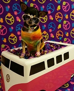 VW Hippie Dog Homemade Costume