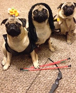 Walking Pugs Homemade Costume
