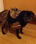Warrior Princess Dog Homemade Costume
