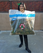 Weed Bag Homemade Costume