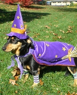 Weenie Witch Dog Costume