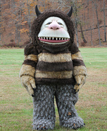 Where the Wild Things Are Carol Homemade Costume