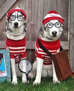 Where's Waldo Dogs Homemade Costume