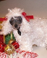 White Poodle Dog Homemade Costume