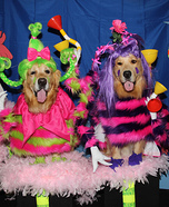 Whos from Horton Hears a Who Dog Costumes