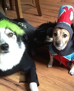 Wicked Witch of the West and Flying Monkey Dog Costumes