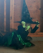 Wicked Witch from the Wizard of Oz Homemade Costume
