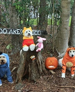 Winnie the Pooh and Friends Homemade Costume