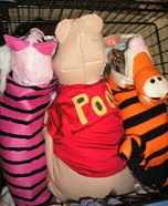 Winnie the Pooh Characters Cats Homemade Costume