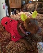 Winnie the Pooh Dog Homemade Costume