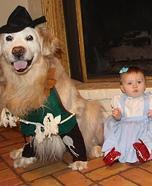 Wizard of Oz Homemade Costume