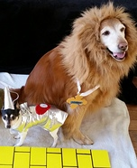 Wizard of Oz Dogs Homemade Costume