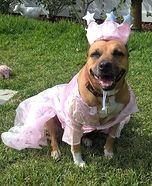 Wizard of Oz Glinda Dog Costume
