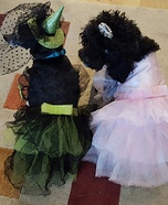 Wizard of Oz Witches Dogs Homemade Costume