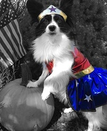 Wonder Woman Dog's Costume