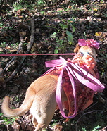 Woodland Fairy Dog Homemade Costume
