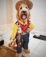 Woody the Cowboy Homemade Costume
